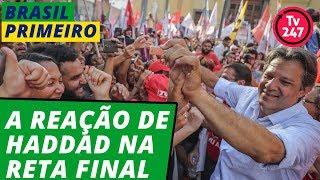 BRASIL PRIMEIRO - A reação de Haddad na reta final