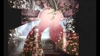 Watch Princessa The Night video