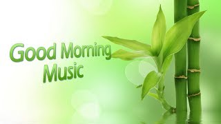 Download Lagu Morning Music for Mood & Creativity | Positive Energy Music | Solfeggio Frequency 417 Hz Gratis STAFABAND
