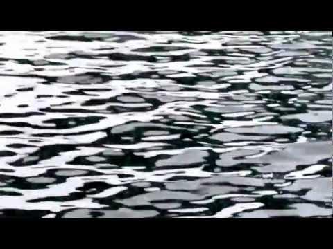 Fishing report - BALIK AVIM  28.10.2012 Video