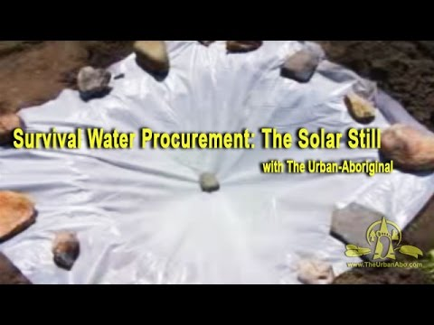 Survival Water Procurement: Solar Still