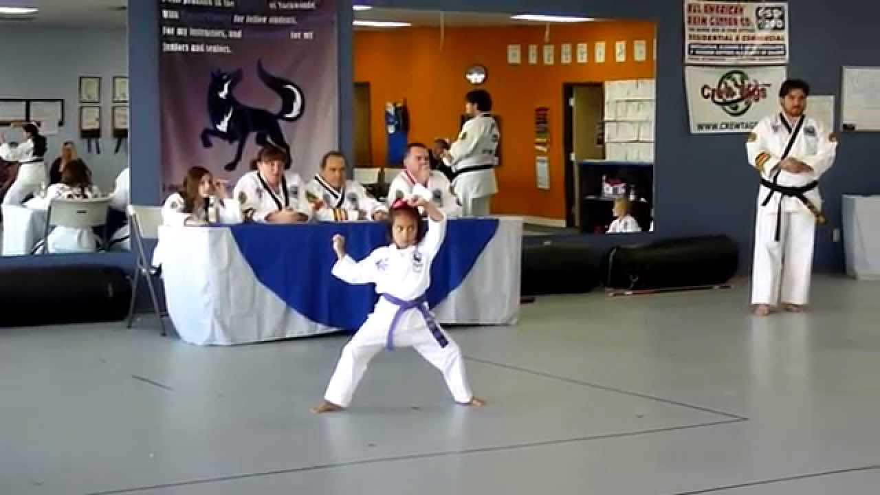 Form High Purple Belt