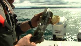 Western Sportfishing with Lee Horsley: San Juan Islands
