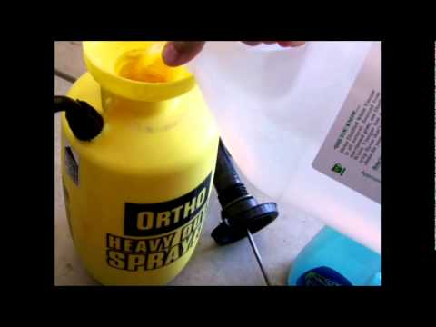 HOW TO MAKE YOUR OWN HOMEMADE WEED KILLER AND GRASS KILLER /MBJreport