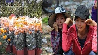 Đoạn clip về người bán hoa Xuân sẽ khiến bạn phải suy nghĩ về việc mua hoa Tết năm  nay