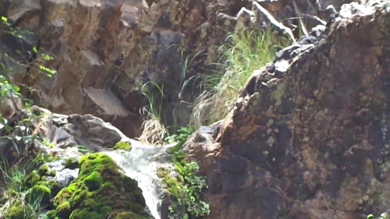 Muthyala Maduvu Falls