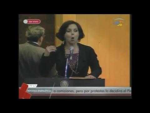 Intervención Diputada Purificación Carpinteyro Calderón