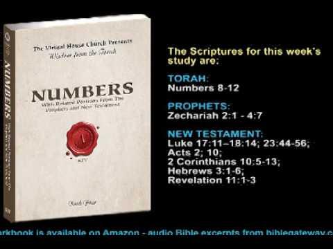 VHC Week 36 - Torah Portion: Beha'alotekha (When you set up)