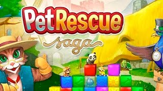 Pet Rescue Saga Level 863 (NO BOOSTERS)