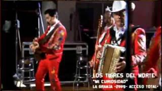 Vídeo 208 de Los Tigres del Norte