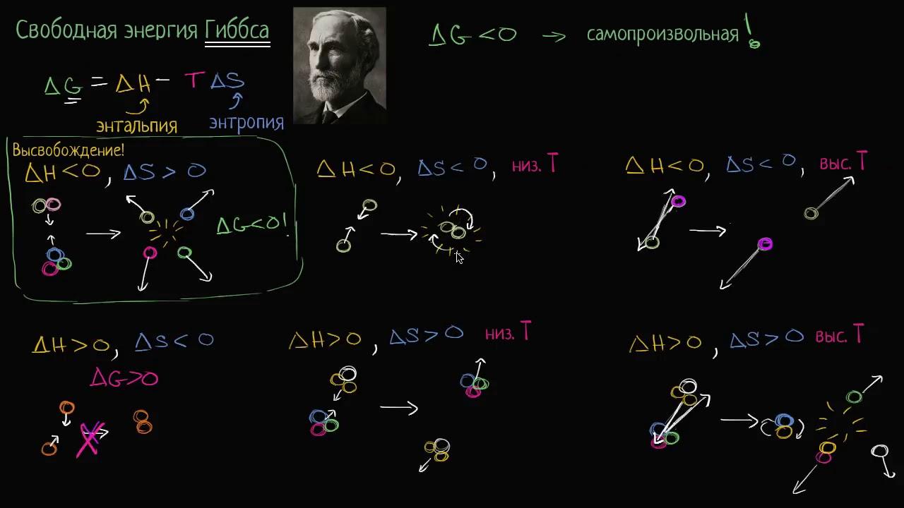 Свободная энергия Гиббса и самопроизвольные реакции (видео 5)   Энергия  Биология