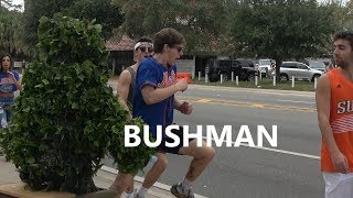 BUSHMAN AT Florida Gators Football game - FUNNY VIDEO - NEW