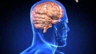 MyHEALTH : Kesan Stres Menjejaskan Fizikal dan Mental