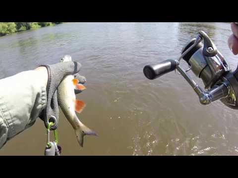 ловля на реке красивая меча видео