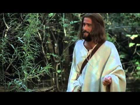 The Jesus Film - Chatino, Nopala / Chatino Oriental Bajo Language (Mexico)