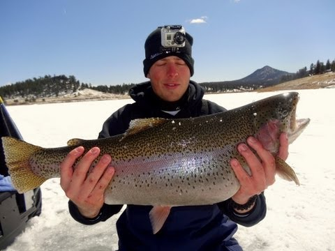 GoPro Ice Fishing - Huge Trophy Colorado Trout