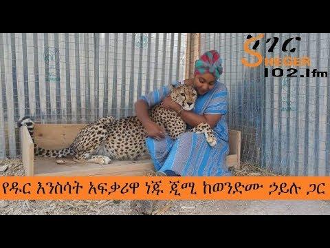 Ethiopia Sheger FM Mezenagna Neju JImi Seied