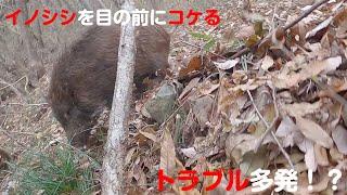 【狩猟番組】今年1頭目のイノシシ猟【FDN】