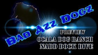 NADD @ Ocala Dog Ranch - Preview