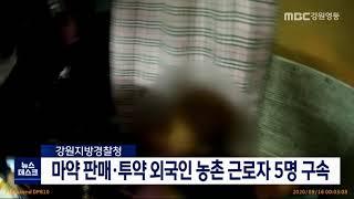 마약 판매·투약한 외국인 농촌 근로자 5명 구속