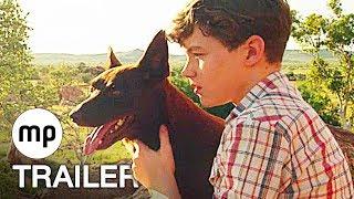 RED DOG - Mein treuer Freund Trailer Deutsch German (2018)