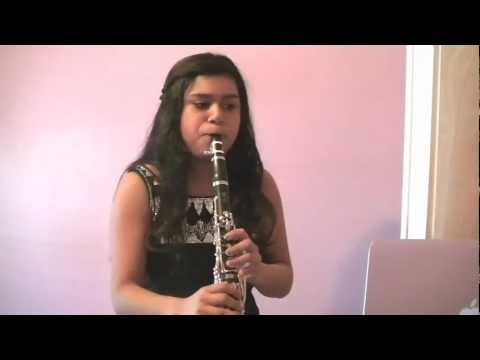 Hallelujah-Alexandra Burke (Clarinet Cover)