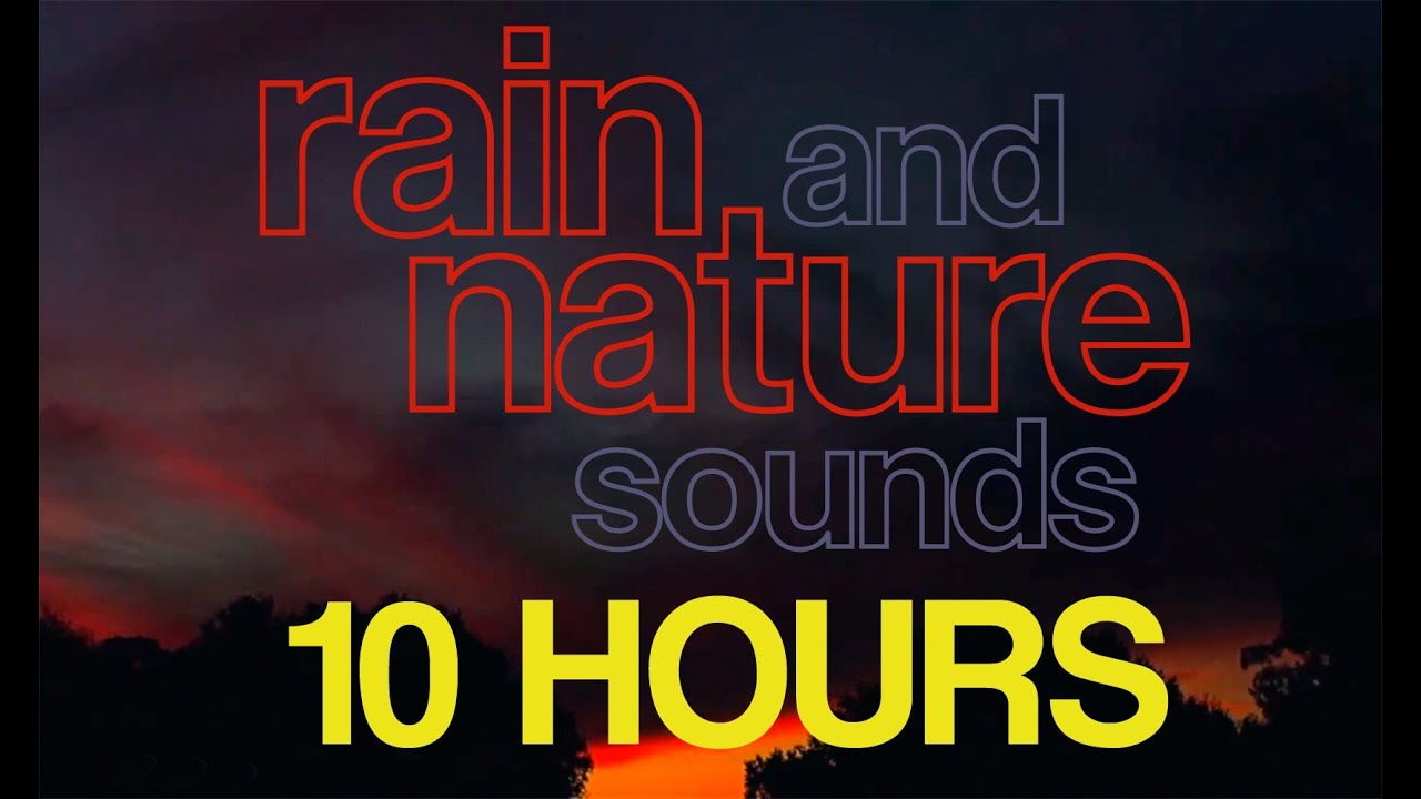 10 hours relaxing rain and nature sounds crickets frogs rainfall