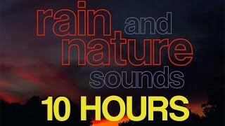 10 Hours - RELAXING Rain and Nature Sounds - Crickets Frogs Rainfall - HD