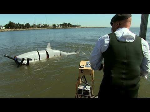Shark-Attack Defenses | MythBusters Jawsome Shark Special -- Shark Week 2012