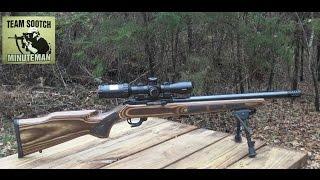 Ruger 10/22 Bull Barrel Target Rifle
