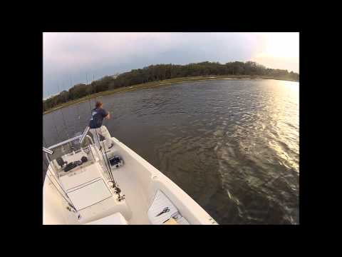 Fishing with Capt. Scott Jones in St. Johns River, Jax, FL