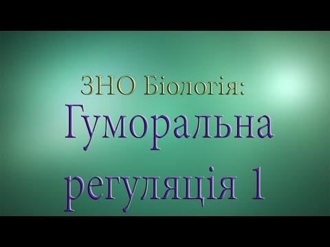 ЗНО Біологія  Гуморальна регуляція 1
