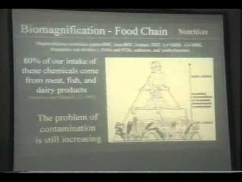Hazards of High Protein Diets