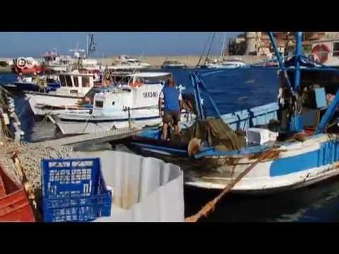 Costa Concordia: Shipwreck Tourism   Journal Reporters