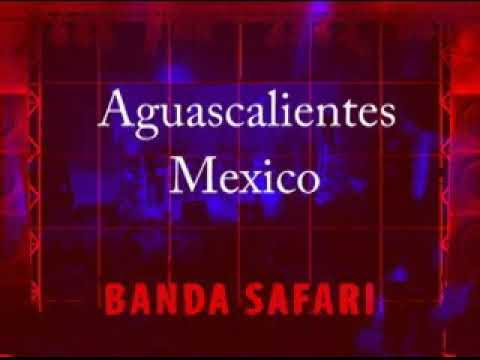 Banda SAFARI en vivo
