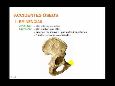 Accidentes óseos 1.avi