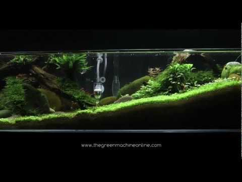 Tributary' aquascape by James Findley