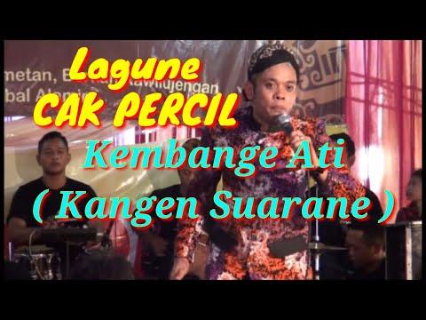 Lagu Cak Percil Kembange Ati ( Kangen Suarane ) | Cak Percil Tampil Live Di Surabaya