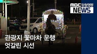 R) 관광지 꽃마차 운행, 엇갈린 시선