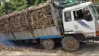 Cứu hộ Hyundai 4 chân chở mía bị xa lầy. HLXMN