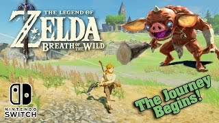The LEGEND OF ZELDA: BREATH OF THE WILD on the Nintendo Switch!!! The Journey Begins!