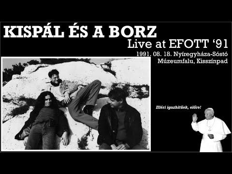 Kispál és a Borz: Live at EFOTT '91