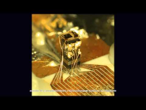 О химических свойствах золота для любителей
