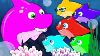 Five Little Sharks | Nursery Rhymes | Kids Songs | Baby Rhymes | Shark Song | Kids Tv Cartoon Videos