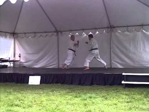 Shorinji Kempo Martial Arts Image 1