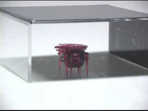HEX BUG CRAB Robotic Creatures