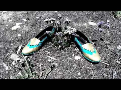 Steam Powered Giraffe - Fancy Shoes