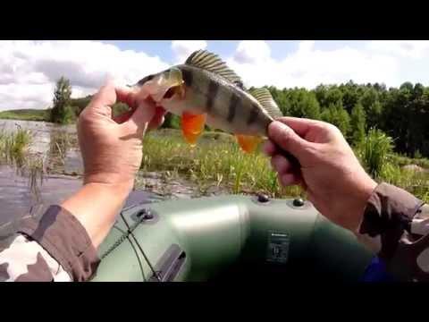 рыбалка лето ловля щуки и окуня