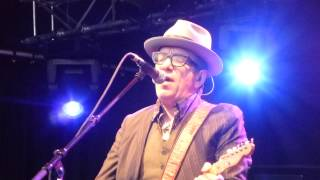 Watch Elvis Costello Song With Rose video