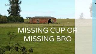 Ed Lapiz - Missing Cup or Missing Bro